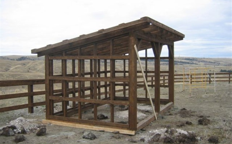 Custom designed horse shelter