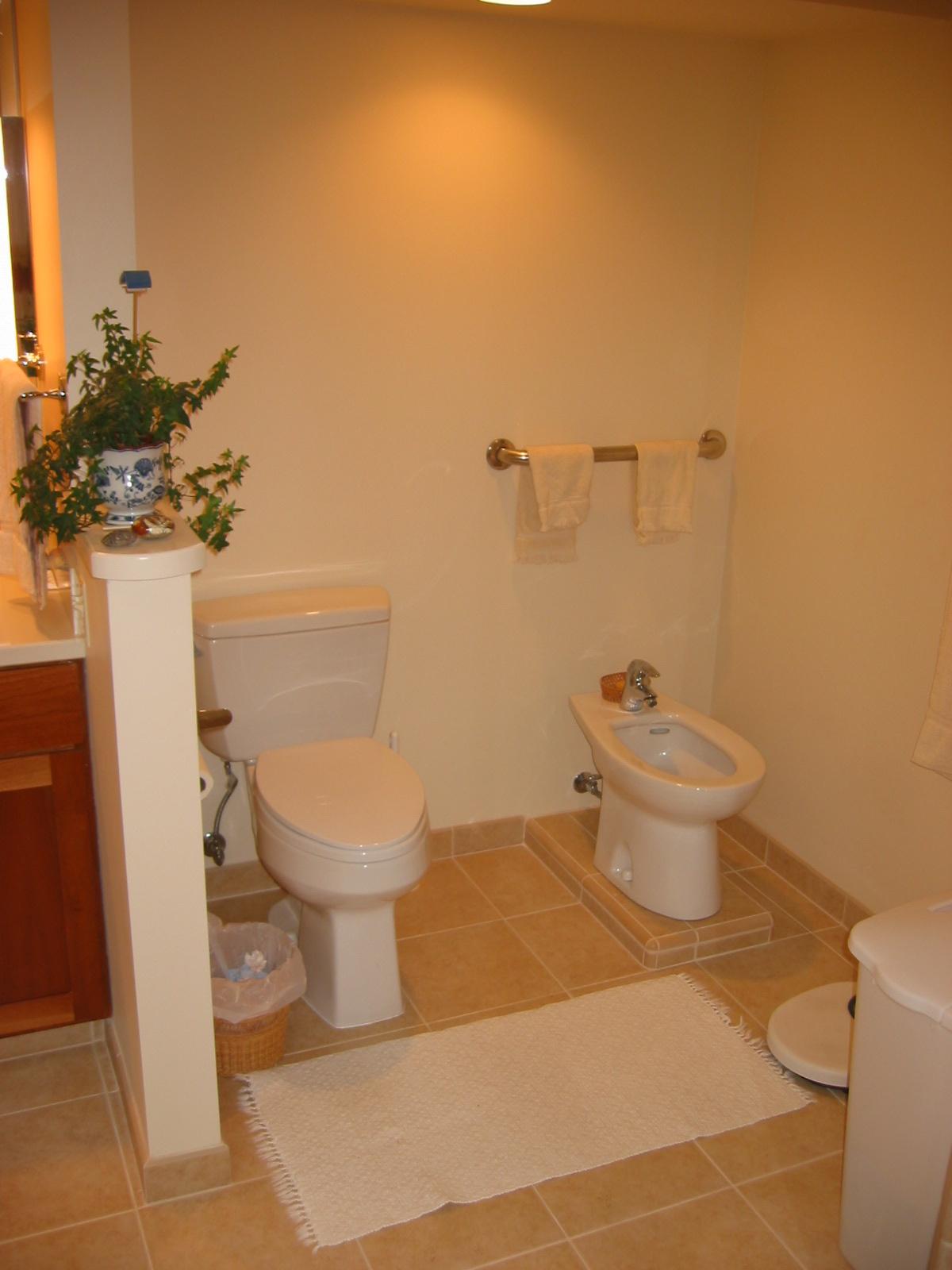 New bidet and toilet location
